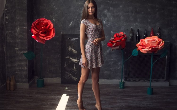 girl, dress, pose, brunette, roses, model, legs, olya, alex zakharov