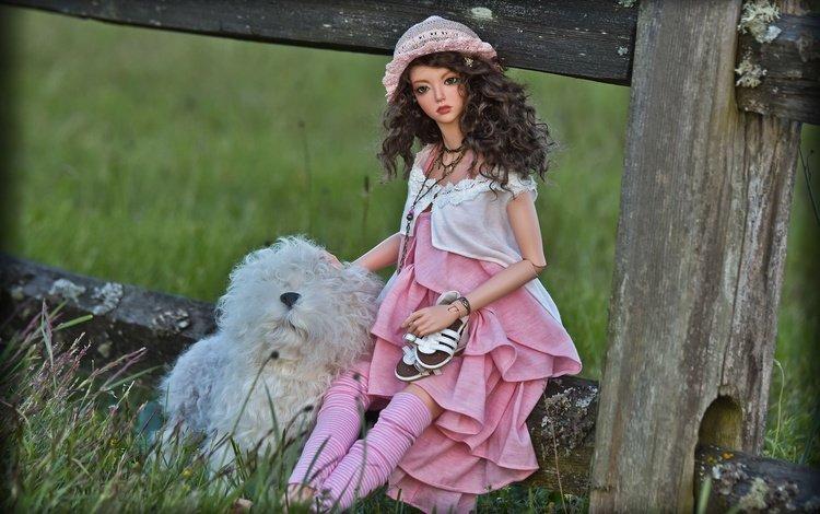 трава, забор, собака, кукла, волосы, лицо, игрушки, шляпка, grass, the fence, dog, doll, hair, face, toys, hat