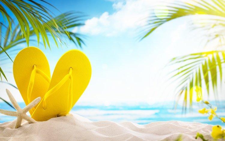the sun, sea, sand, beach, summer, palm trees, stay, vacation, slates