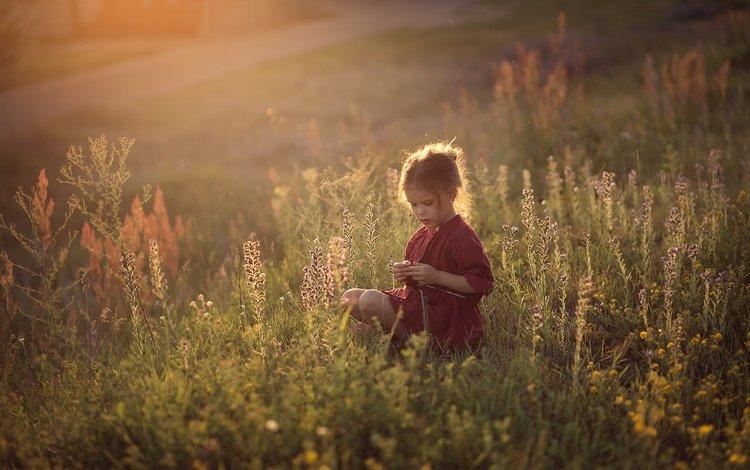 grass, field, children, girl, child, childhood, wildflowers, darya stepanova