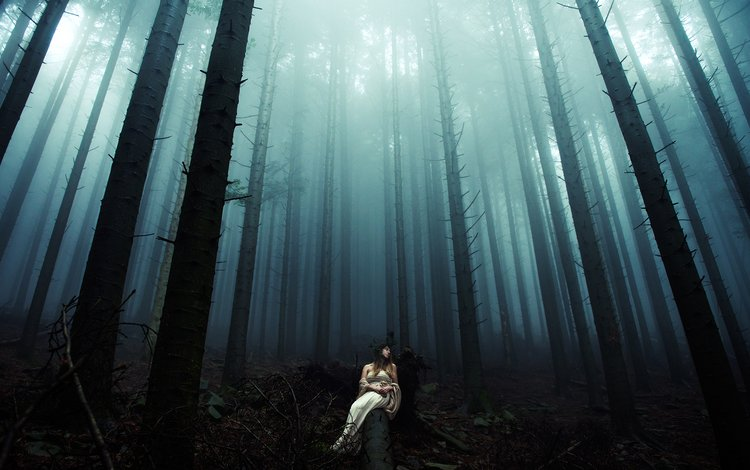 ночь, деревья, лес, девушка, платье, стволы, бревно, davide lopresti, night, trees, forest, girl, dress, trunks, log