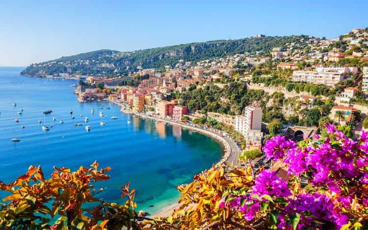 цветы, море, яхты, 9, ницца, flowers, sea, yachts, nice