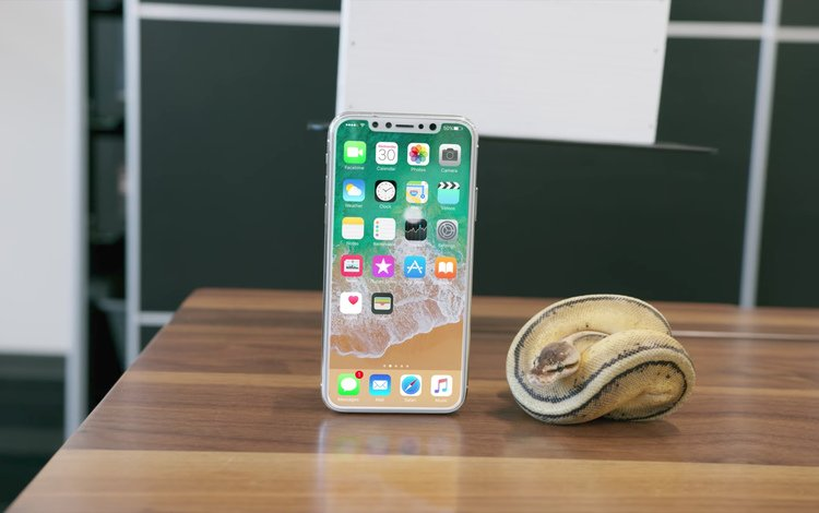 iphone 8, iphone x, новый айфон, последний айфон, new iphone, latest iphone