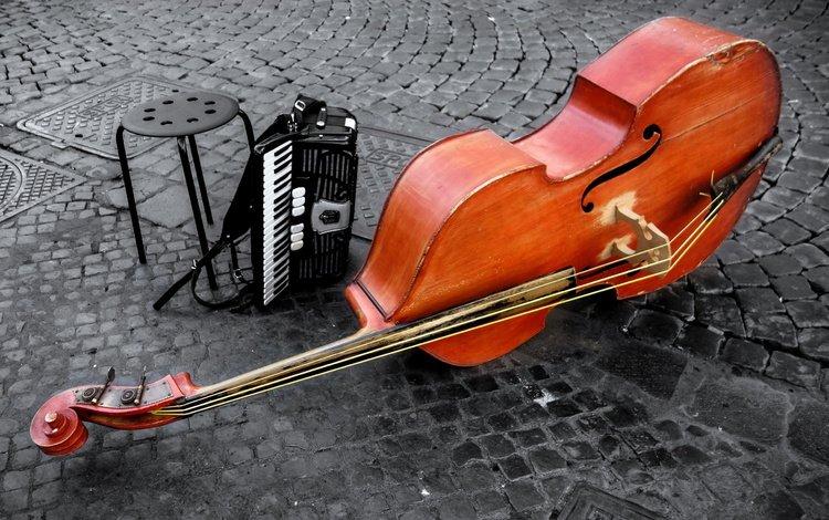 скрипка, струны, виолончель, музыкальный инструмент, аккордеон, контрабас, аккордион, violin, strings, cello, musical instrument, accordion, contrabass, the accordion