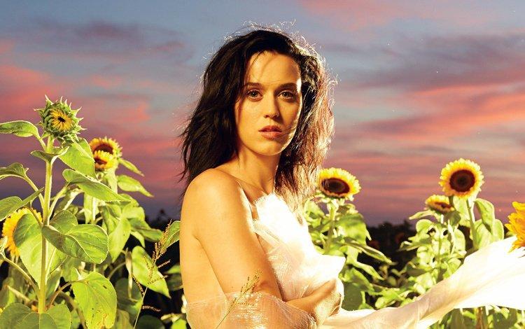 девушка, знаменитость, поле, музыка, взгляд, волосы, лицо, подсолнухи, кэти перри, girl, celebrity, field, music, look, hair, face, sunflowers, katy perry