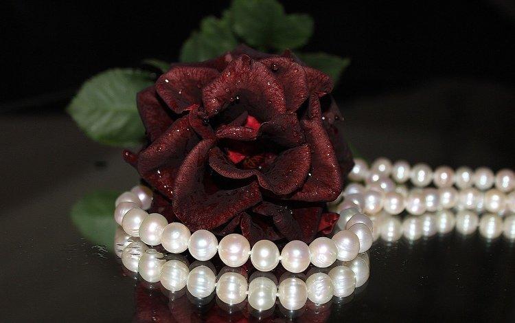 цветок, роза, украшение, ожерелье, жемчуг, flower, rose, decoration, necklace, pearl
