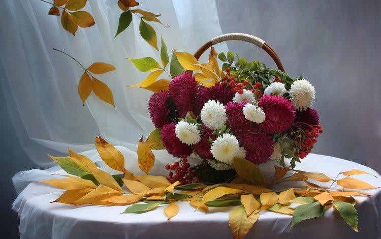 цветы, листья, осень, натюрморт, рябина, астры, flowers, leaves, autumn, still life, rowan, asters