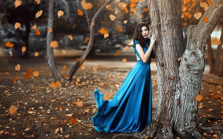 дерево, девушка, осень, модель, листопад, venkara, miki macovei, tree, girl, autumn, model, falling leaves, miki macovei come with