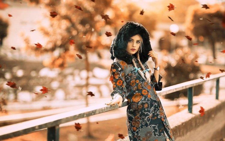 girl, bridge, look, autumn, watch, face, falling leaves, hood, braids