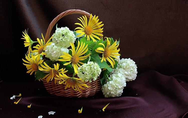 цветы, лепестки, ткань, букет, корзина, гортензия, дороникум, flowers, petals, fabric, bouquet, basket, hydrangea, doronikum
