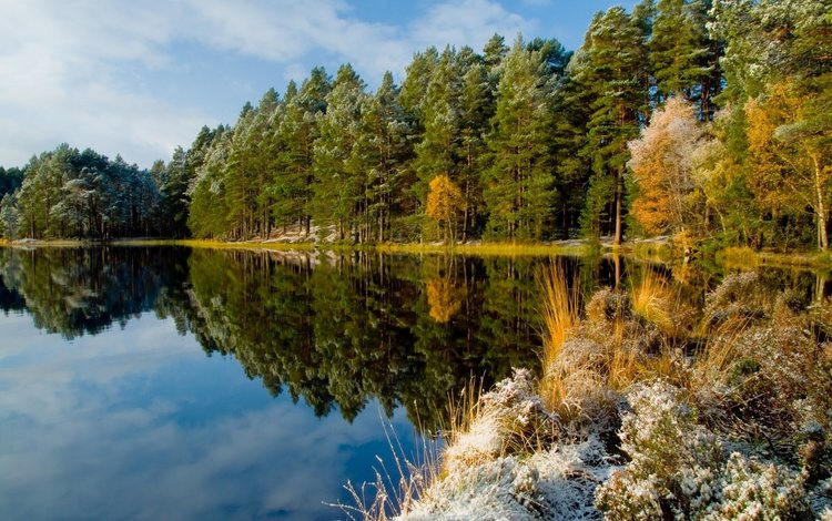 the sky, clouds, trees, lake, nature, forest, reflection, frost, autumn
