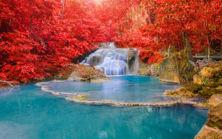 nature, forest, waterfall, autumn, thailand
