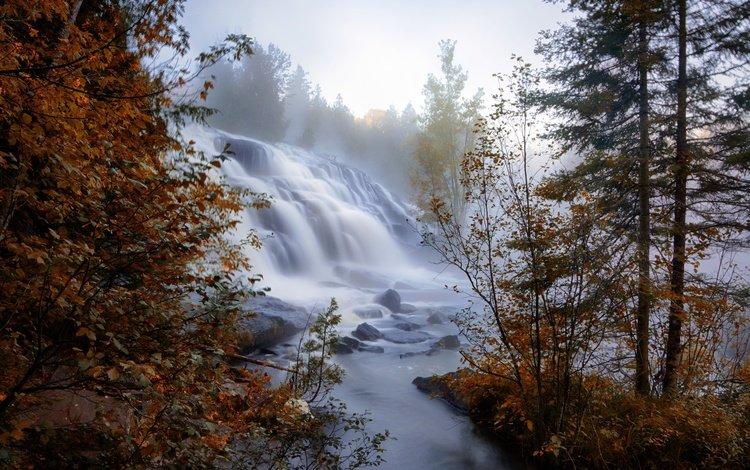 деревья, река, туман, ветки, водопад, осень, trees, river, fog, branches, waterfall, autumn