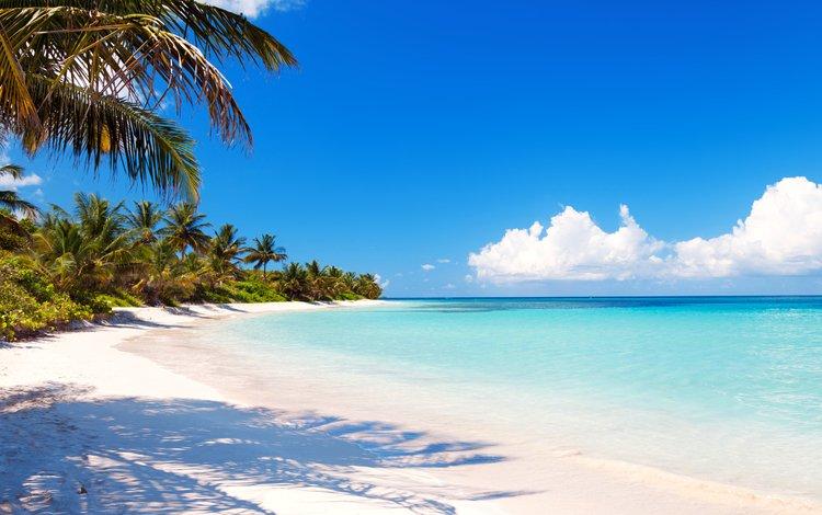 море, пляж, тропики, 10, sea, beach, tropics