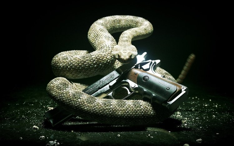 фон, пистолет, змея, заставка, background, gun, snake, saver