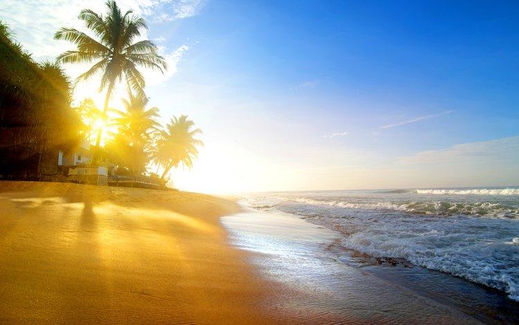 sea, beach, tropics, 1