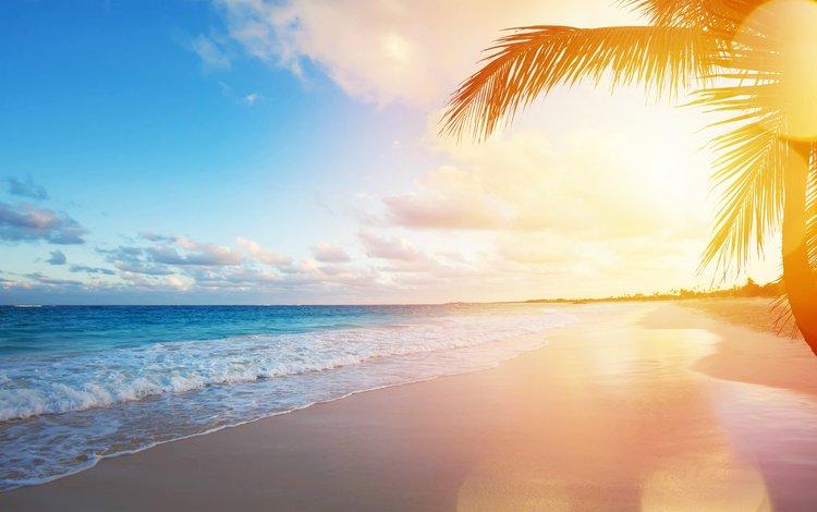 закат, море, пляж, тропики, sunset, sea, beach, tropics