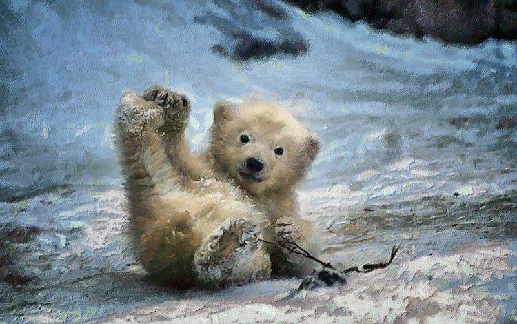 арт, зима, медведь, живопись, медвежонок, art, winter, bear, painting