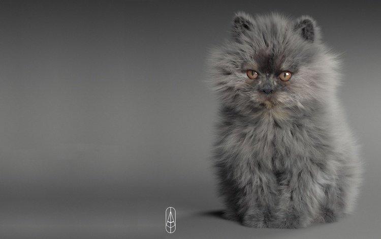 арт, животные, кошка, котенок, малыш, пушистик, 3д графика, art, animals, cat, kitty, baby, pussy, 3d graphics
