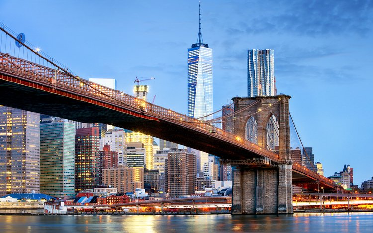 bridge, the city, megapolis, usa, new york, brooklyn, tomassereda
