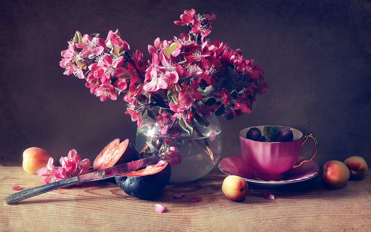 branches, board, petals, fruit, cup, knife, apple, still life, plum, vase, anastasia soloviova