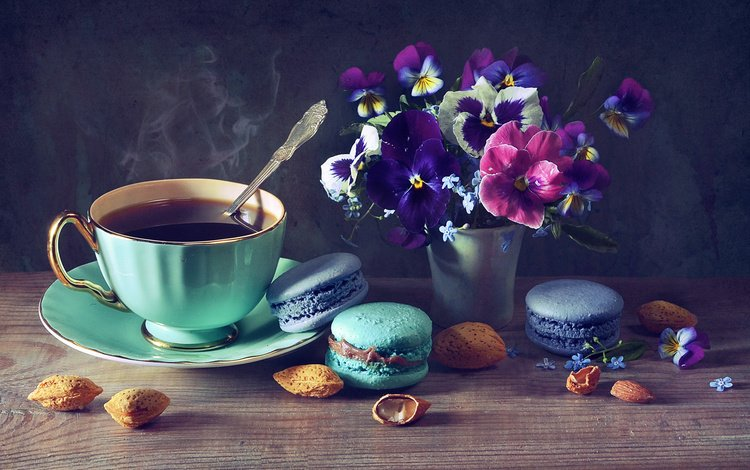 flowers, nuts, coffee, cup, forget-me-nots, pansy, cakes, almonds, violet, vase, macaroon, anastasia soloviova