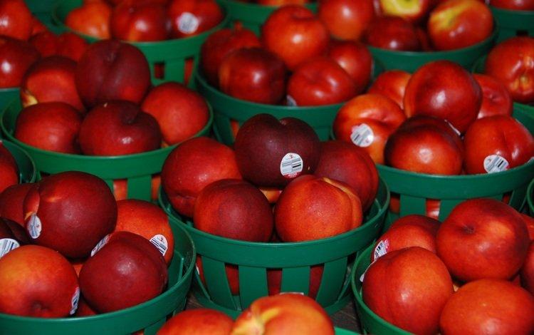 фрукты, нектарины, корзинки, fruit, nectarines, baskets