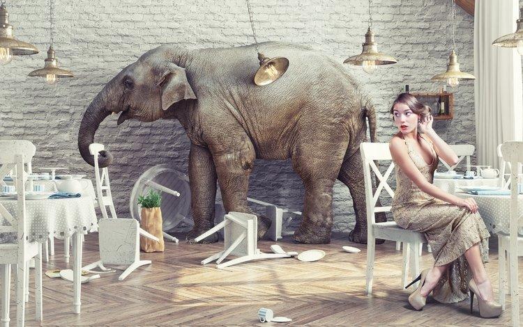 girl, elephant, creative, restaurant