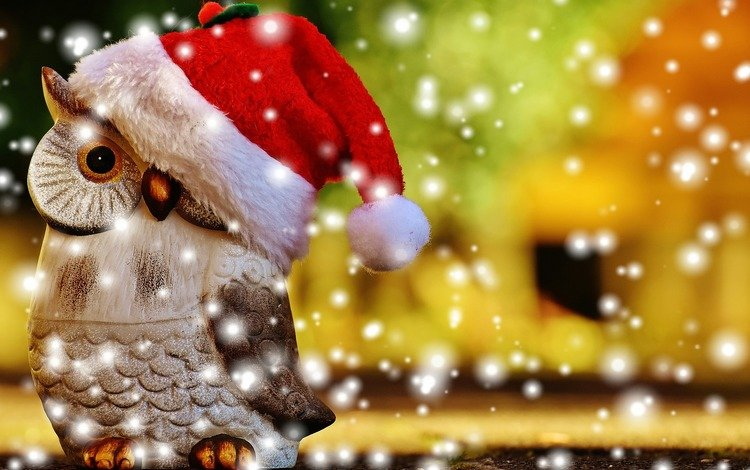 сова, снег, новый год, птица, рождество, колпак, фигурка, санта, owl, snow, new year, bird, christmas, cap, figure, santa