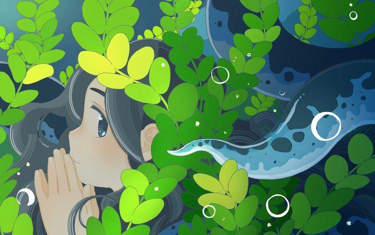 листья, девушка, аниме, профиль, лицо, leaves, girl, anime, profile, face