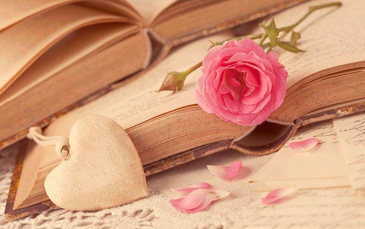 flower, rose, petals, books, heart, love, romance