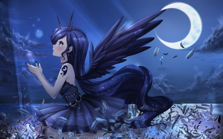 girl, look, the moon, wings, anime, profile, hair, face, feathers, my little pony, princess luna