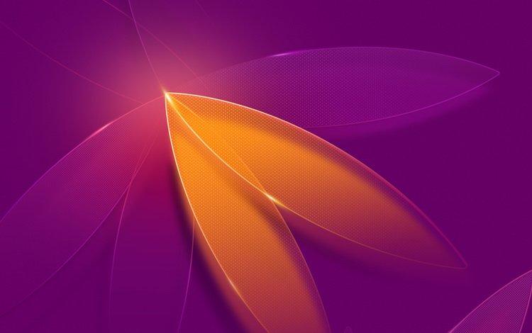 абстракция, цветок, лепестки, цвет, фиолетовый, форма, 3д, зд, abstraction, flower, petals, color, purple, form, 3d, zd