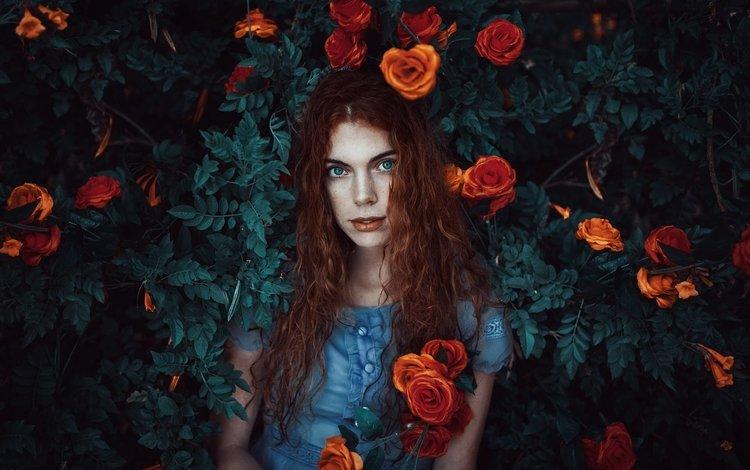цветы, sara, девушка, рыжая, модель, голубые глаза, губки, веснушки, длинные волосы, flowers, girl, red, model, blue eyes, sponge, freckles, long hair