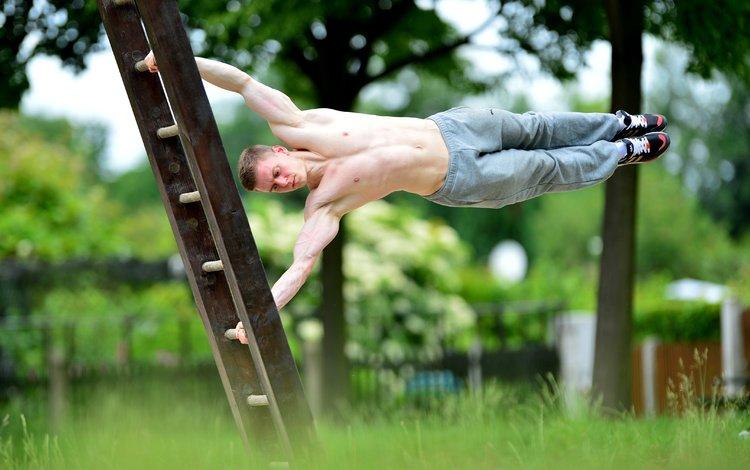 pose, men, muscles, gymnastics, workout