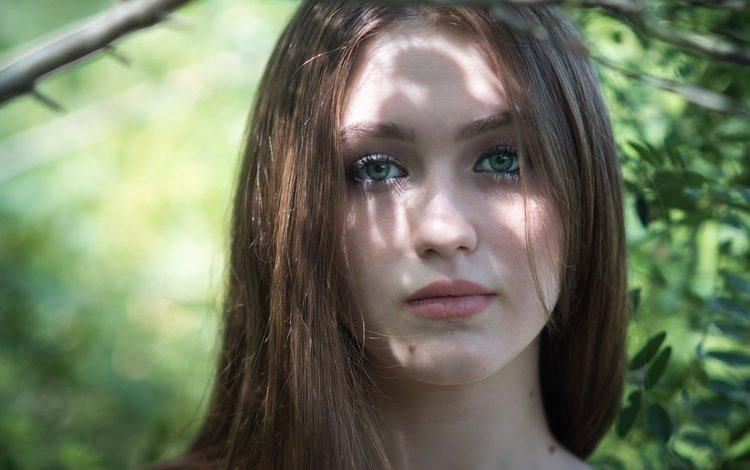глаза, милашка, листья, девушка, портрет, взгляд, волосы, губы, лицо, eyes, cutie, leaves, girl, portrait, look, hair, lips, face