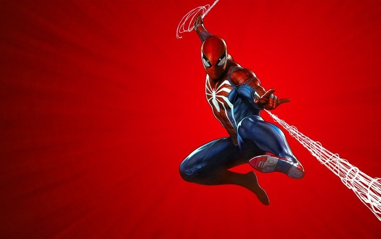 паутина, сеть, человек паук, web, network, spider-man