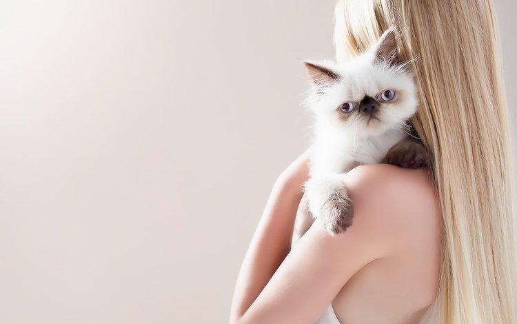 девушка, фон, кошка, girl, background, cat