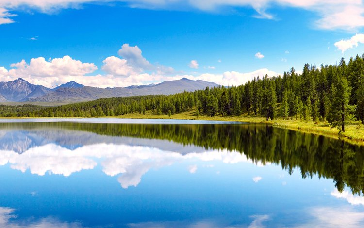 озеро, горы, лес, lake, mountains, forest