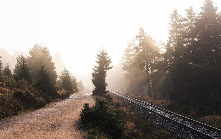 road, railroad, nature, fog