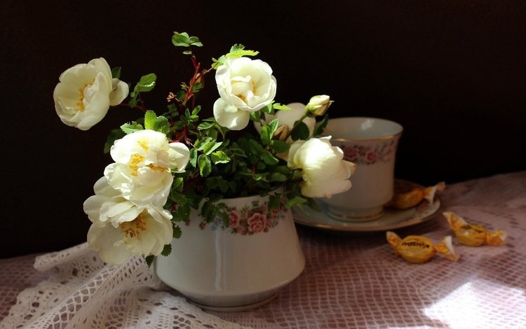 ветки, конфеты, шиповник, чашка, салфетка, цветки, вазочка, branches, candy, briar, cup, napkin, flowers, vase
