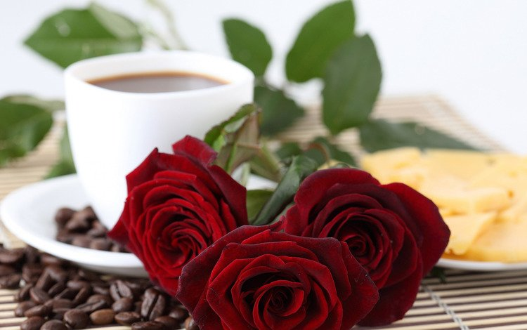 roses, grain, coffee, red, cheese, saucer, cup, plate