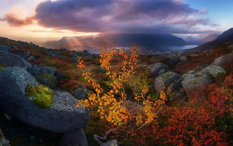 light, mountains, nature, stones, clouds, rays, landscape, autumn, tree, khibiny, the kola peninsula