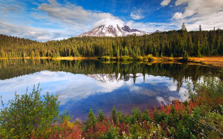lake, forest, mountain