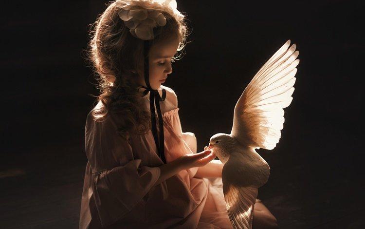 flower, children, girl, bird, dove, reverie