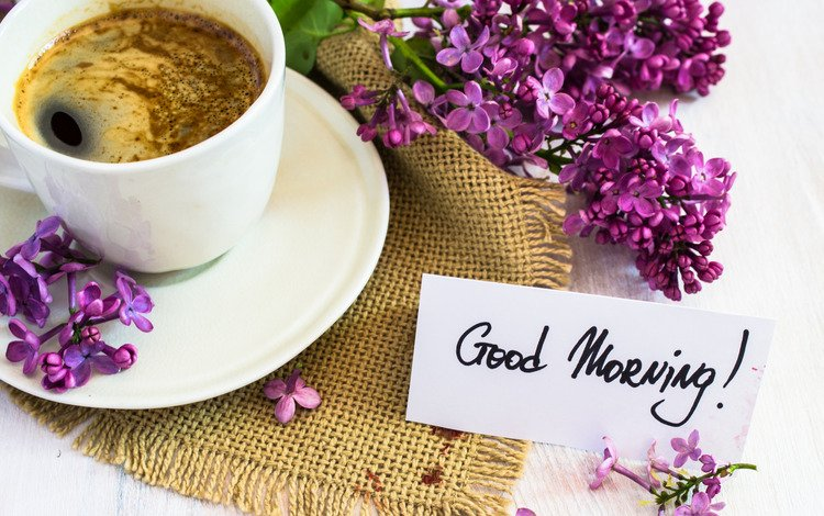 morning, coffee, bouquet, cup, lilac