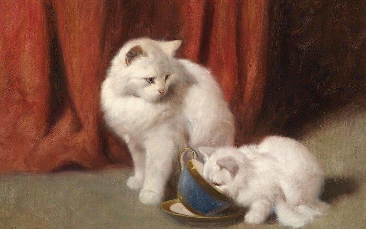 рисунок, картина, животные, кошка, коты, белая, arthur heyer, figure, picture, animals, cat, cats, white