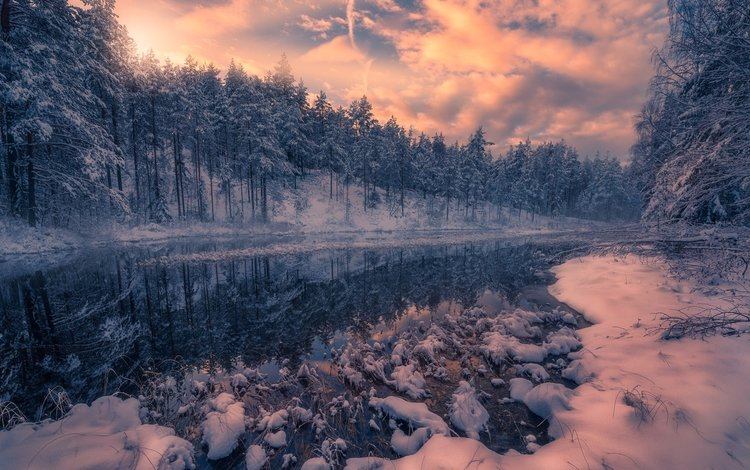 river, snow, nature, forest, winter