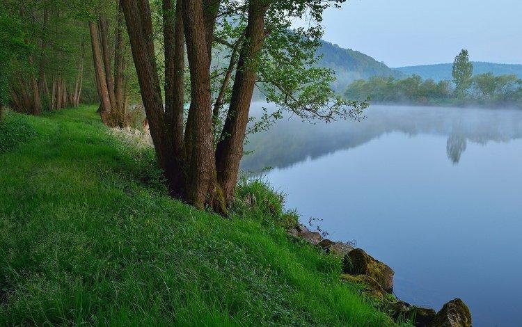 the sky, grass, trees, river, rocks, nature, plants, landscape, morning, fog, germany, bayern