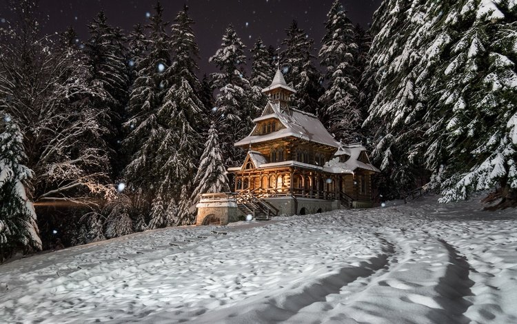 night, trees, snow, nature, forest, winter, landscape, house, ate, poland, mansion